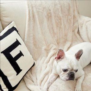 Comfy Throw Blanket NWT!